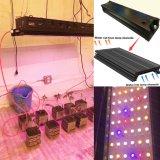LED wachsen helles 210W 400W 490W für zusätzliche Beleuchtung im Gewächshaus