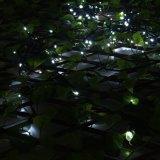 Lumière accessible de batterie de contrôle de temps pour décoration extérieure/d'intérieur dedans toute la nuit