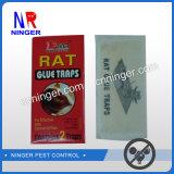 Ловушка клея крысы и мыши прямой связи с розничной торговлей фабрики липкая большая бумажная