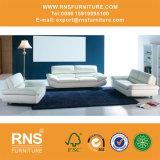 بينيّة أريكة جلد أريكة مكتب أريكة 6056#