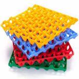 Muffa di plastica personalizzata del cassetto dell'uovo dell'iniezione