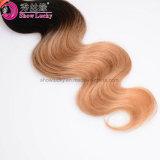 Het onverwerkte Maleise Weefsel van het Haar bundelt 100 Stileren van het Haar van het Haar van Ombre 1b/Blonde van de Golf van het Lichaam van het Menselijke Haar het Maagdelijke Mooie