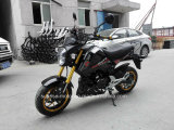 良質のオートバイのHondastyle標準的な猿