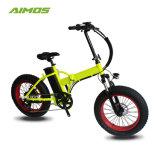 Green Power 20pouces pneu Fat vélo électrique avec affichage LCD