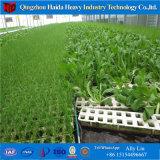 Bajo costo Multispan película agrícolas de gases de efecto