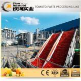Mundo fábrica de transformação de tomates pendentes