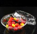 Recipiente de alimento descartável dos PP/caixa/empacotamento plásticos desobstruídos/transparentes