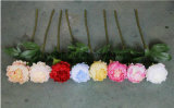 Fleurs de récifs artificiels pivoine de gros mariage pivoine artificielle Garland Arrangement de Fleurs artificielles