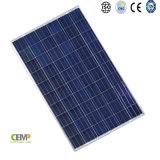I distributori altamente hanno riconosciuto il comitato solare di 265W PV Polycrystyalline