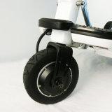 科学技術の感覚、ファッション感覚の電気スクーター、電気バイク