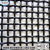 Maglia tessuta acciaio 50 per il setaccio di pietra per il frantoio