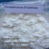 Polvere Masteron Enanthate/Drostanolone Enanthate 472-61-1 degli steroidi anabolici