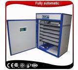 Prix de gros oeuf solaire incubateur entièrement automatique Hatcher Machine
