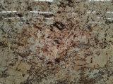 Crema de oro de losa de granito para cocina, cuarto de baño/Piso/pared