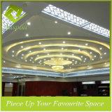 Plafond en aluminium d'extension de matériau de construction pour le modèle décoratif