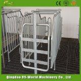 Клети беременность фермы свиньи отделенные