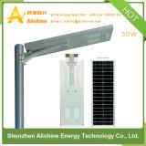 luz de calle solar de 30W LED con diseño integrado