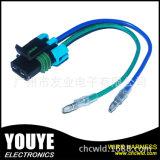 Câble de lampe de voiture usine OEM avec 2p Connectror étanche
