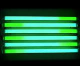 Tubo del LED (P144T)