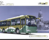 Langer Stadt-Bus (ZGT6102DH)