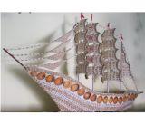 Barco de shell