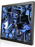 32 인치 - 높은 Birght LED 역광선 LCD 감시자 (LMB320WH)