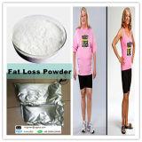 Heißes Verkaufs-Gewicht-Verlust-Droge-Puder Orlistat für fettes Ruduce