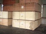 Madera contrachapada de HPL para el uso de los muebles