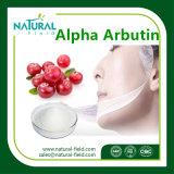98% Alpha Arbutin бета Arbutin (используемое в предварительных Кож-забеливая косметиках)