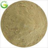 Sorgente fogliare della pianta del fertilizzante dell'amminoacido