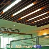Het binnen Comité van het Plafond van pvc van de Installatie van het Ontwerp Vuurvaste Gemakkelijke voor Verkoop
