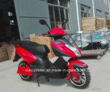 Motorino elettrico della gomma grassa adulta del lusso 1000W 1500W 2000W Aguila Ava da vendere (CCE-E8)