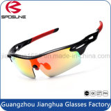 Venta al por mayor caliente de la fábrica que completa un ciclo los vidrios de Sun de la pesca que vuelan las gafas de sol de los deportes al aire libre para el motorista Pachaging con el caso