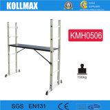 De Ladder van de Steiger van het aluminium met het Platform van het Werk