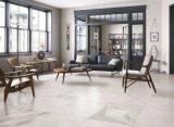 Azulejo de suelo esmaltado estilo de la porcelana del cemento para el suelo y la pared (FN01)