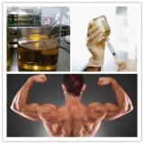 99% نقاوة سترويد [وينسترول] شفويّ [ستنوزول] [ميكرونيزد] لأنّ عضلة حالة نموّ