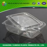 蝶番を付けられたふたのプラスチックフルーツのパッキング容器