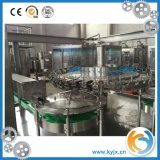 Chaîne de production remplissante automatique de boisson non alcoolique de bouteille d'animal familier fabriquée en Chine
