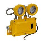 Source de lumière à LED haute puissance de 200 Watt Explosion-Proof Flood Lampe à LED