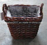 소나무 정원 바구니 도매