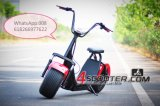 2000W Woqu/Seev Citycoco Scooter eléctrico