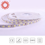 High Brightness SMD3528 SMD2835 SMD5050 SMD5630 Bande LED
