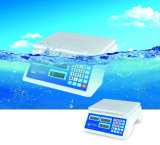 디지털 아BS 플라스틱 강세 가격 계산 가늠자 (DH-688)
