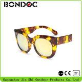 [هيغقوليتي] حارّ يبيع نظّارات شمس عصريّ