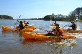 El solo plástico del kajak de la pesca del nuevo Favorable-Pescador se sienta en el kajak que viaja superior