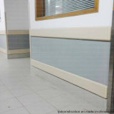 [هيغقوليتي] مستشفى ممر [كرشبرووف] جدار حارس