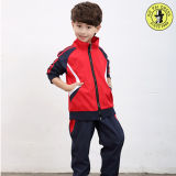 School Kids Jogging Sports Sportswear Tracksuit
