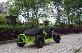 80cc het Go-kart van Carton Monster Truck voor Sale met Ce en EPA