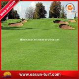 ゴルフスポーツのための人工的なパット用グリーンの草