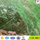 خضراء [سنس] انحدار حماية سياج مع [إيس9001] شهادة